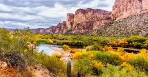 Header-Arizona-Desert